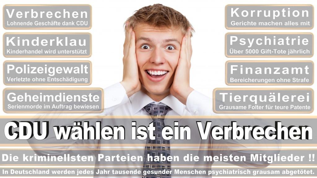 Sachsensumpf, Angela Merkel kommt nach, Joachim Gauck, Stimmzettel, Umfrage, Prognose, Wahlwerbung, Wahlplakate, Termin, Datum, Ergebnis, Gewinner, Verlierer, Landtagswahl-Sachsen-Anhalt-2016 (275)